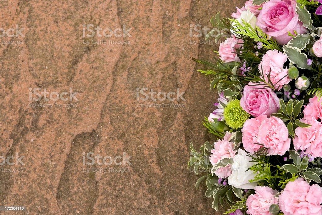 Pink carnation border royalty-free stock photo