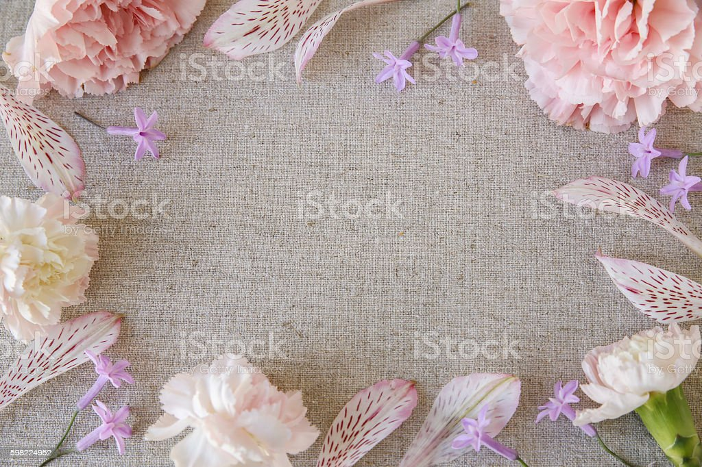 Pink Carnation flowers copy space linen background foto royalty-free