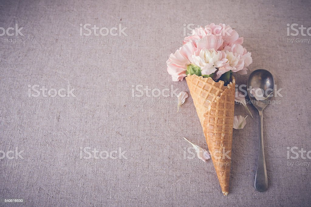 Pink carnation flowers in ice cream waffle cone,selective focus stock photo