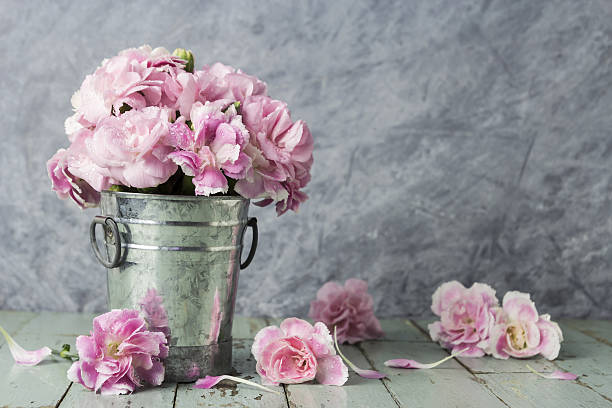 pink carnation flowers in zinc bucket on old wood - silberne vase stock-fotos und bilder