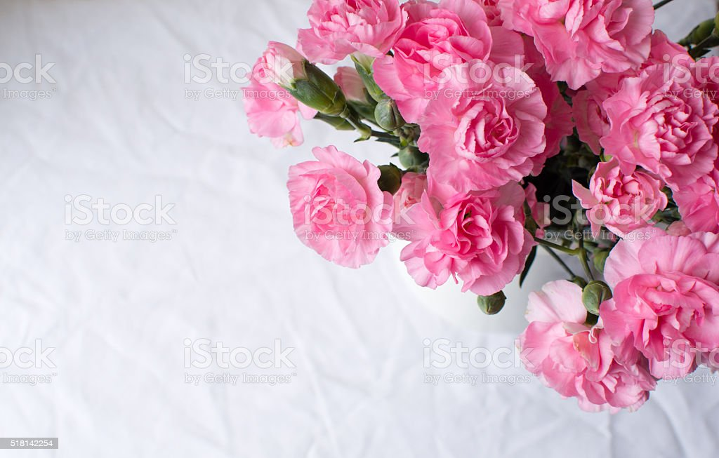 Pink carnations over tablecloth stock photo
