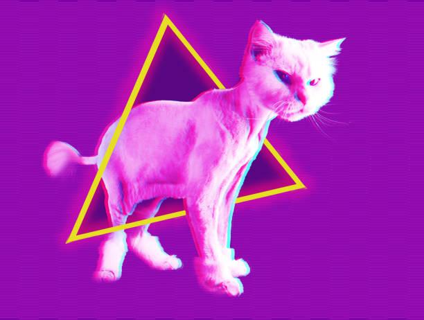 gato rosado. retro onda sintetizador vaporwave retrato de un gato gracioso. concepto de carteles estilo memphis. - cat vaporwave fotografías e imágenes de stock