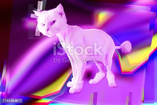 istock Pink cat. Retro wave synth vaporwave portrait of a funny cat. Concept of memphis style posters. 1144364617