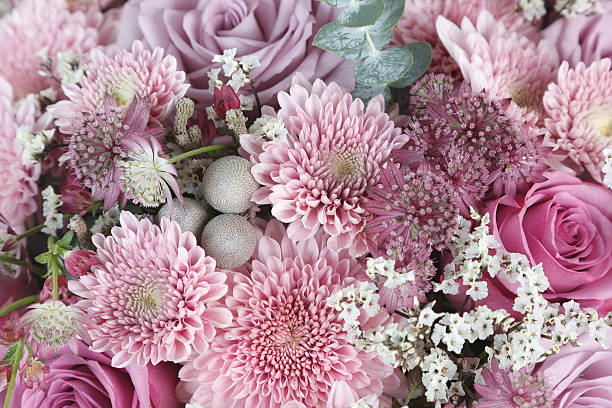 Pink chrysanthemum, roses and astrantia flowers background - Photo