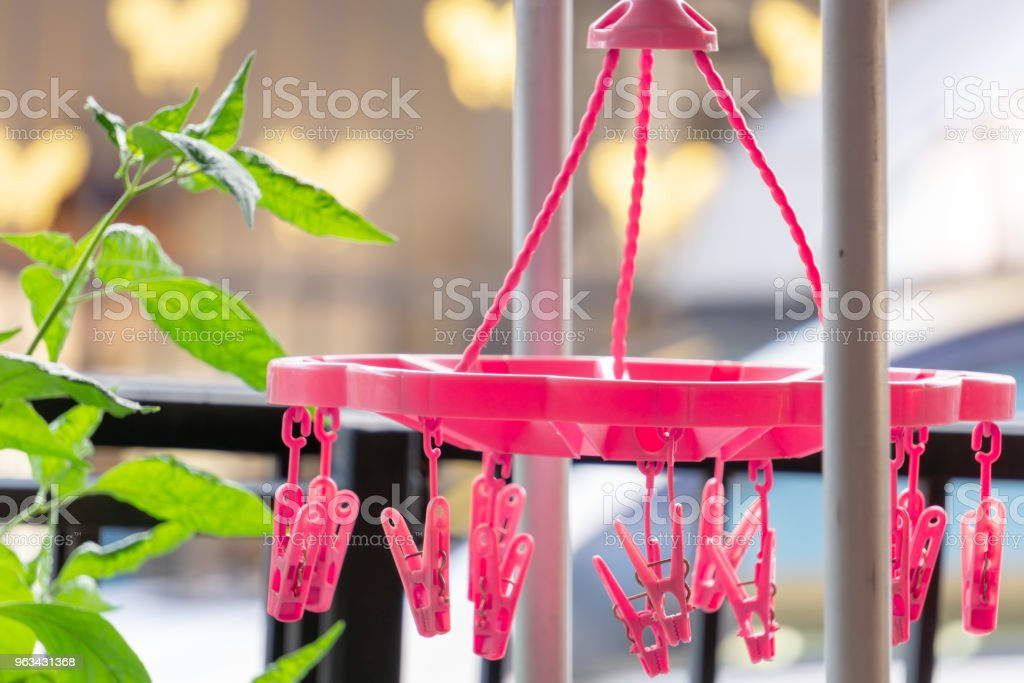 Pink clamps for sun drying, clothes hanging clip,Sun drying under eaves for avoid raining. - Zbiór zdjęć royalty-free (Bez ludzi)