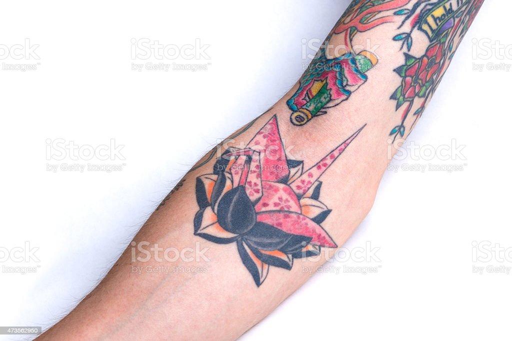 Grue De Lotus Rose Noir Tatouage Avantbras Photos Et Plus D Images
