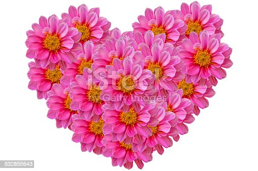 Pink dahilia flowers in heart shape for valentines festival