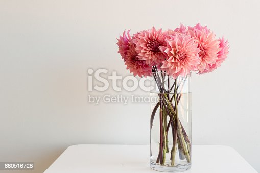 Bright pink dahlias in tall glass vase on white table against neutral background with copy space to left