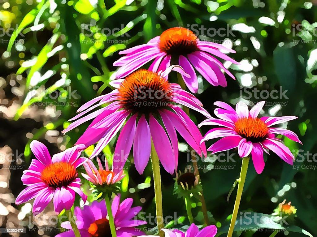 Pink Dasies #2 stock photo