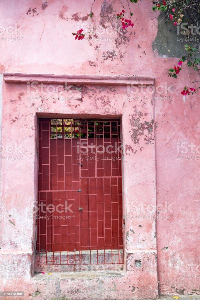 Pink door and flowers stock photo