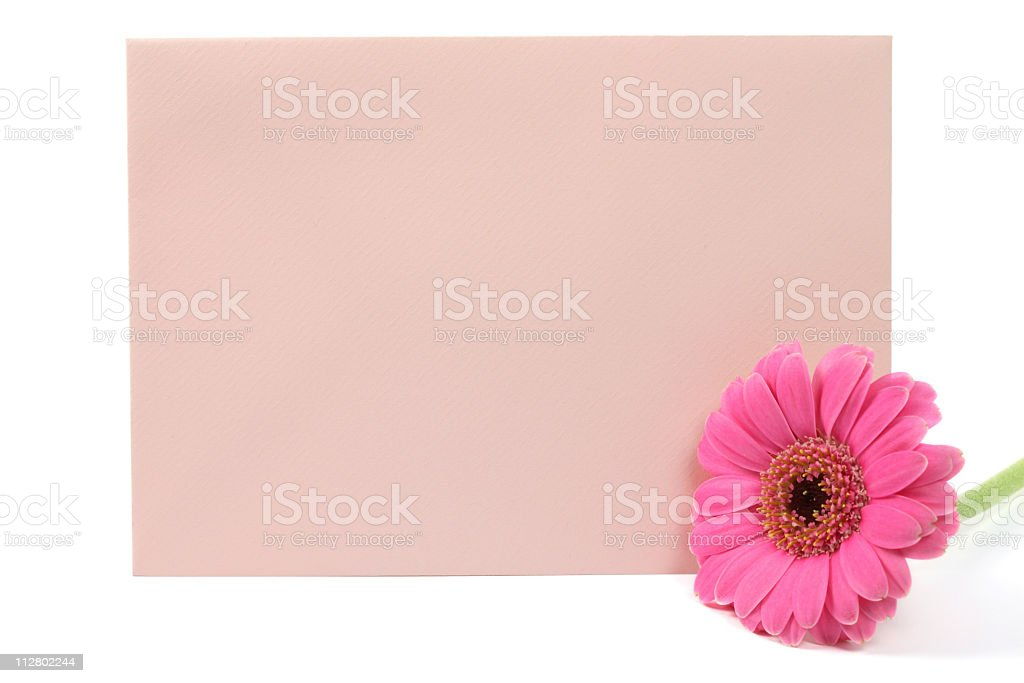 Pink envelope with daisy stock photo