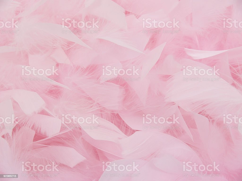 Pink Feather Boa royalty-free stock photo