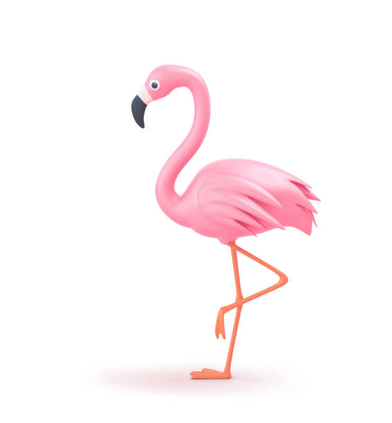 Pink flamingo isolated on white clipping path included picture id1201161777?b=1&k=6&m=1201161777&s=612x612&w=0&h=iozuux4glei4xi0ysit7xwdlcvq1iwjecajjwasrd o=