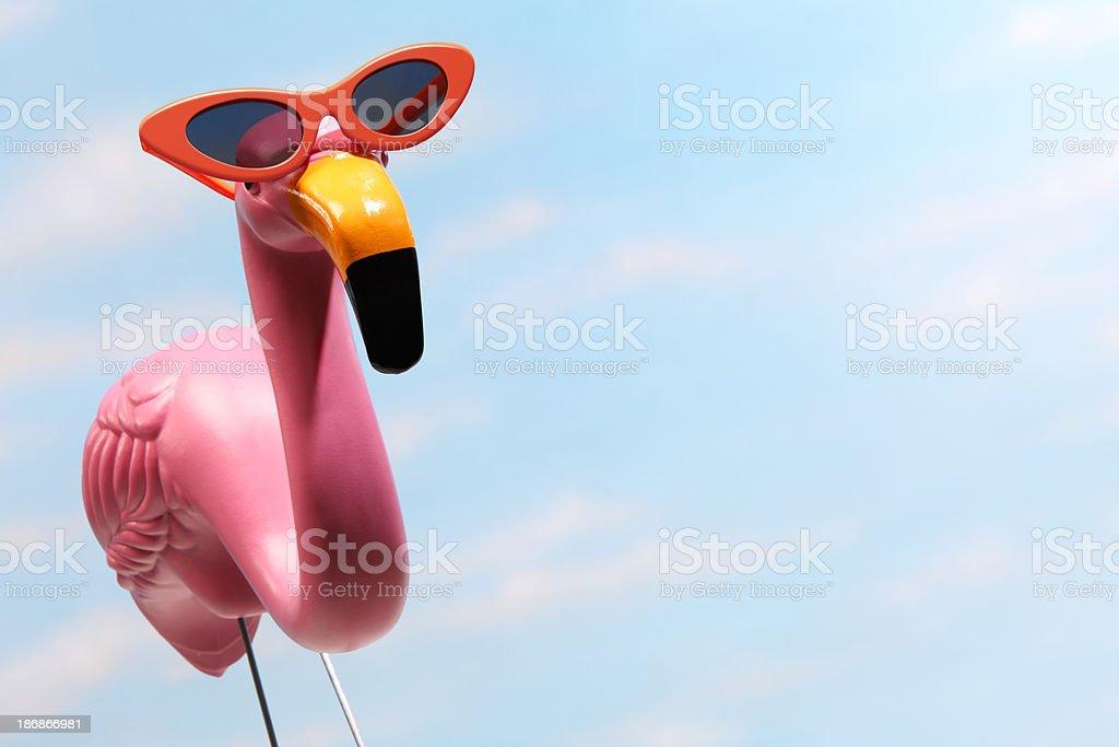 Pink flamingo wearing large orange sunglasses royalty-free stock photo