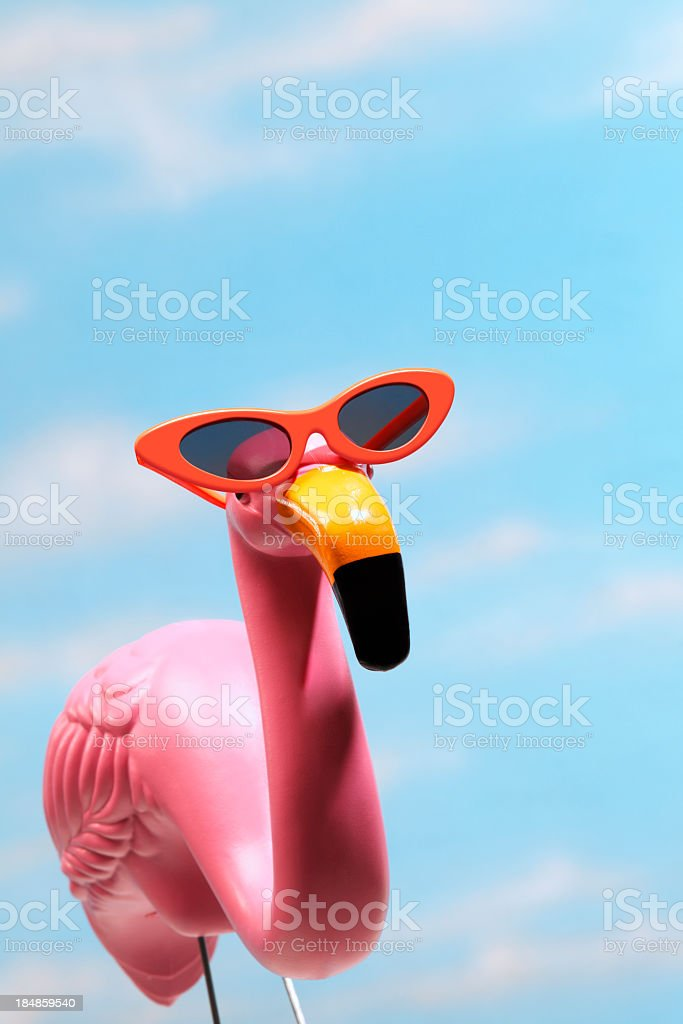 Pink flamingo wearing sunglasses against blue sky stock photo