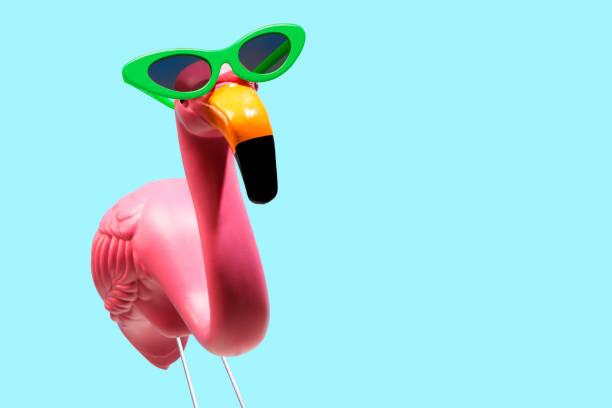 Pink Flamingo Wearing Sunglasses stock photo