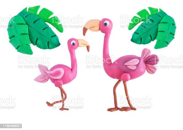 Pink flamingo with palm leaves made of plasticine isolated on white picture id1136399001?b=1&k=6&m=1136399001&s=612x612&h=n4znqgji2fn47yhig5urdoi5aha8nioggbafno0h858=