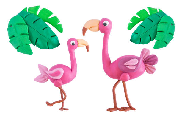 Pink flamingo with palm leaves made of plasticine isolated on white picture id1136399001?b=1&k=6&m=1136399001&s=612x612&w=0&h=ncphzkumtawx5wz1rpcuxhz3 z1sgiv5cptlddmzgve=