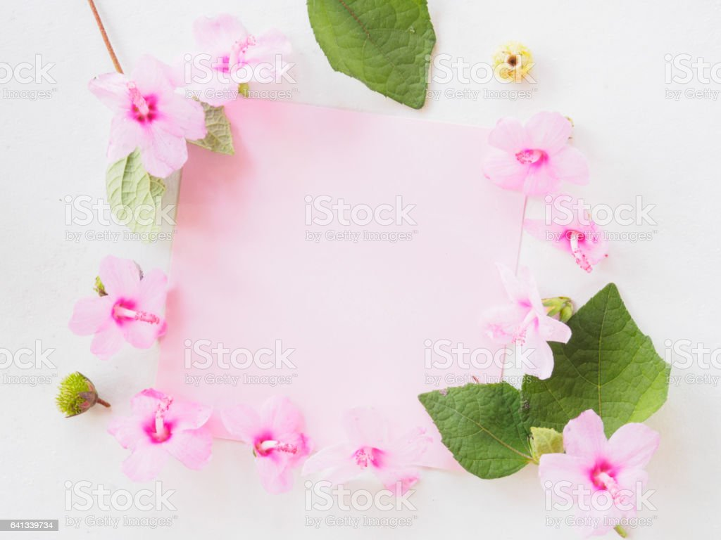 Pink Flower And Blank Note Page On White Background Stock Photo