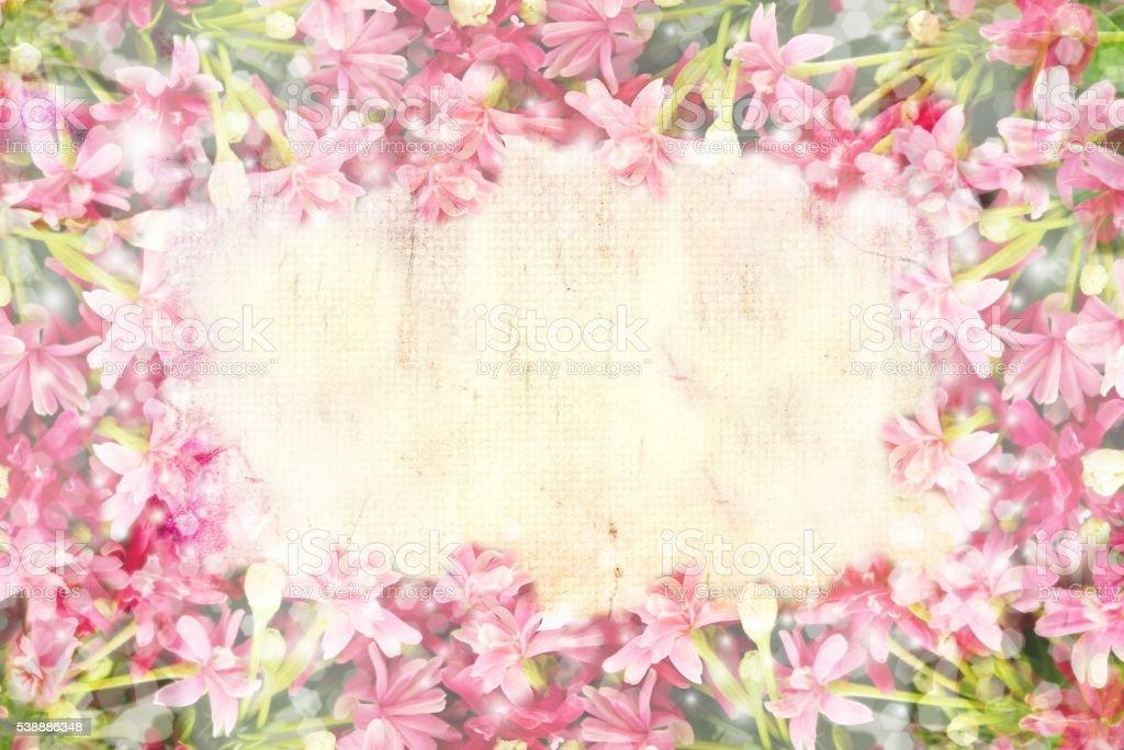 Pink flower border and frame in vintage background stock photo pink flower border and frame in vintage background royalty free stock photo mightylinksfo