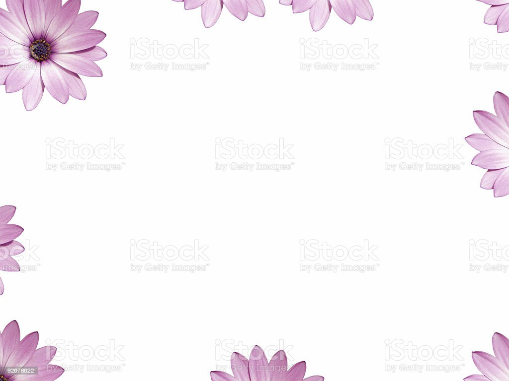 Pink flower borderframe ready for your message or picture stock pink flower borderframe ready for your message or picture royalty free stock photo mightylinksfo Images