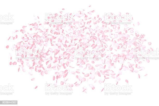 Pink flower petals background picture id503844352?b=1&k=6&m=503844352&s=612x612&h=vh5jqa2iiv3rrohuzvxmmlxncp 5nholwet25ko4imo=