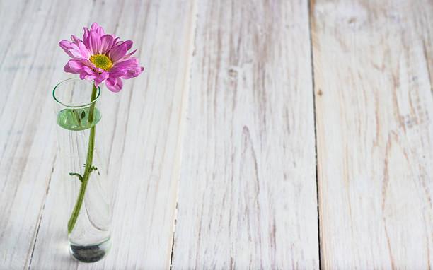 Rosa Blumenmuster – Foto