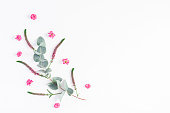 istock Pink flowers and eucalyptus branches. Flat lay, top view 812993350