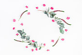istock Pink flowers and eucalyptus branches. Flat lay, top view 812998142