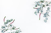 istock Pink flowers and eucalyptus branches. Flat lay, top view 813001302