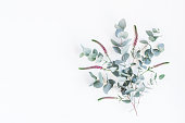istock Pink flowers and eucalyptus branches. Flat lay, top view 823376030