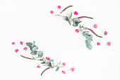 istock Pink flowers and eucalyptus branches. Flat lay, top view 825819090
