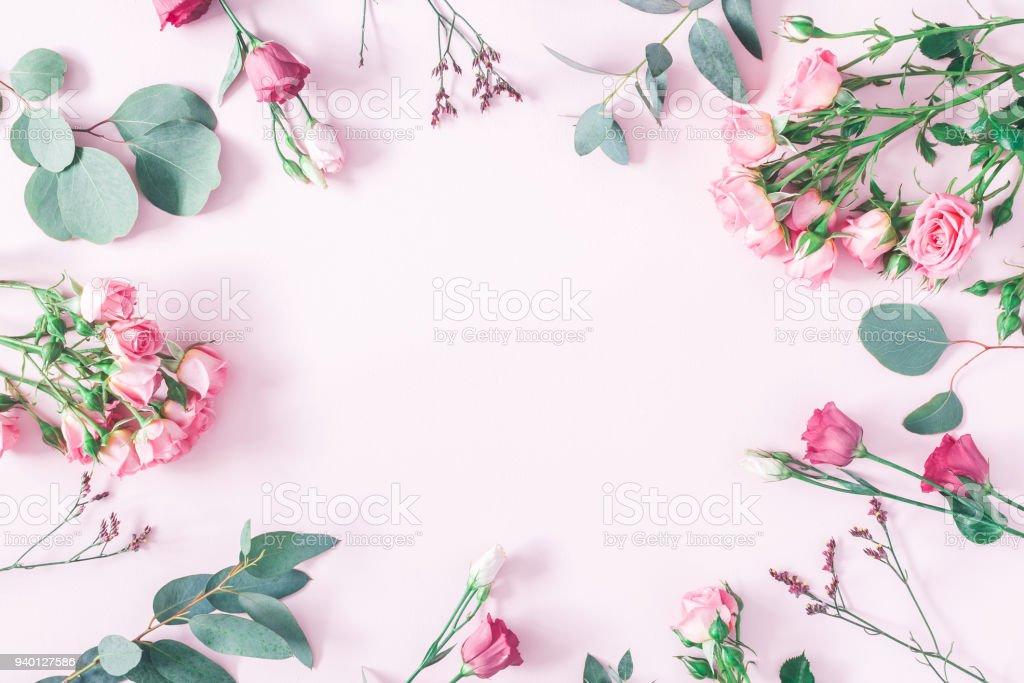 Rosa flores y ramas de eucalipto. Vista plana endecha, superior - foto de stock
