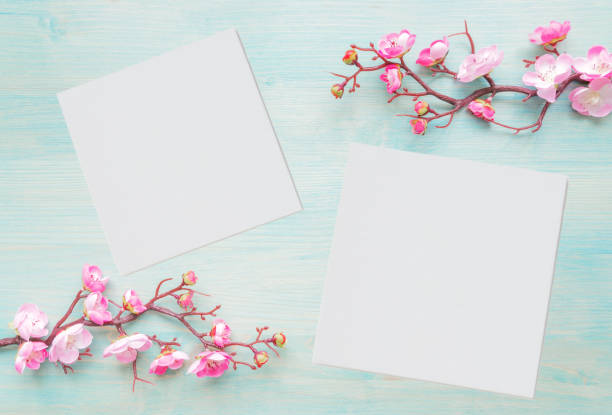 Pink flowers and two paper sheets on blue wooden background stock photo