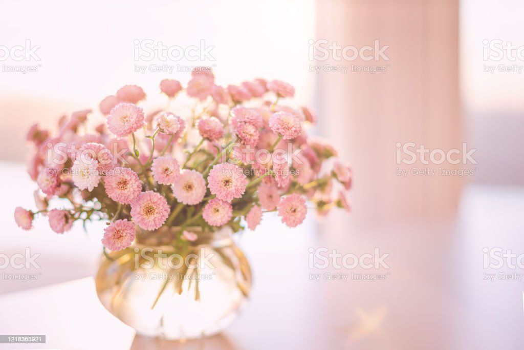 Pink Flowers Bouquet In Glass Vase With Blurred Soft Focused Background By The Window Stock Photo Download Image Now Istock