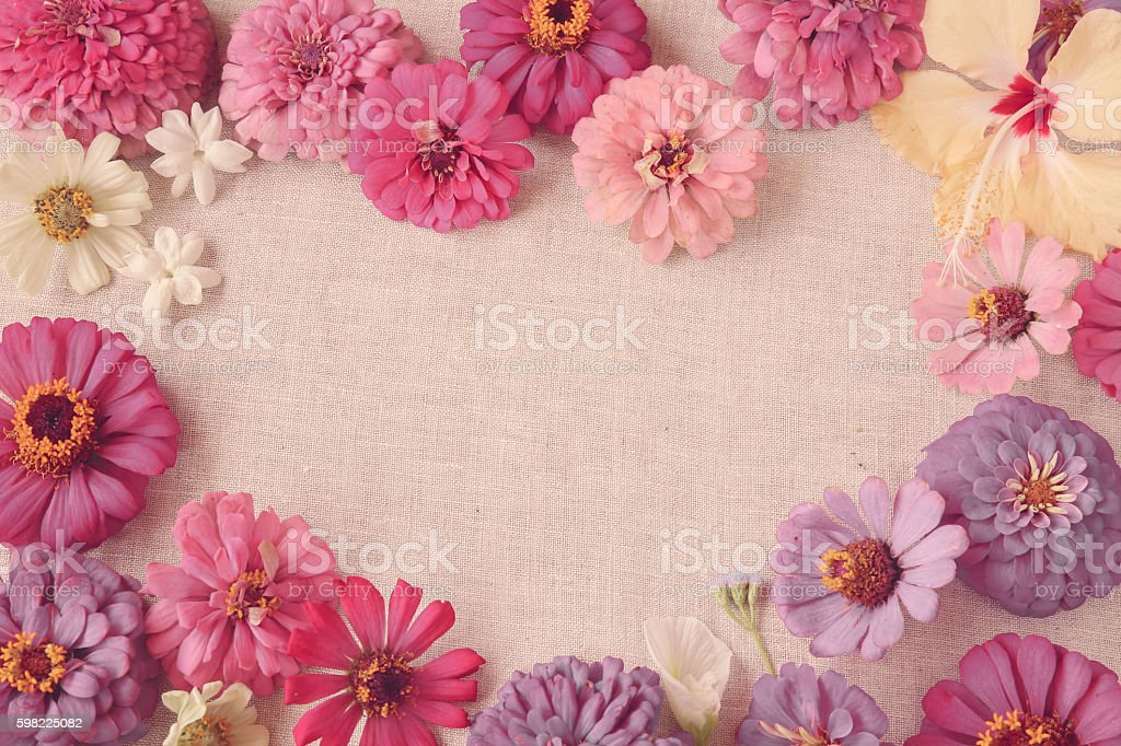 Pink flowers copy space background, selective focus, toning foto royalty-free
