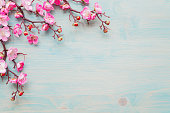 istock Pink flowers on blue wooden background 1208169038