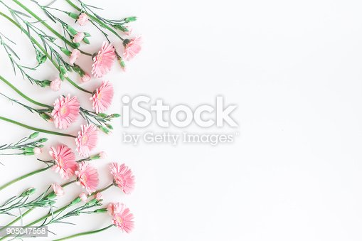 istock Pink flowers on white background. Flat lay, top view 908047558