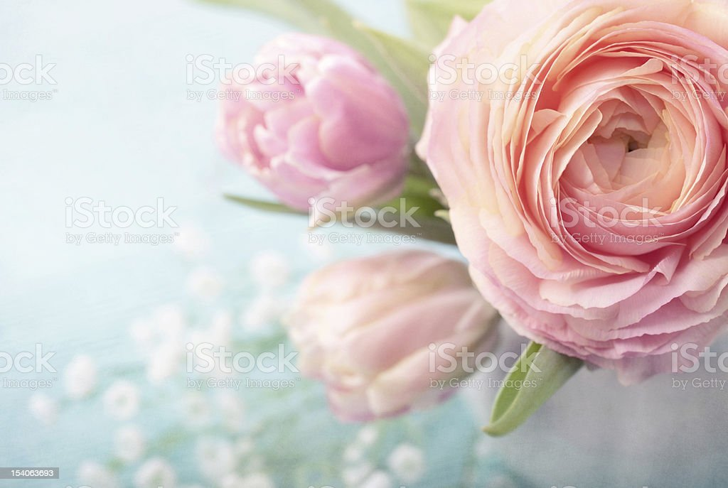 Pink flowers stock photo