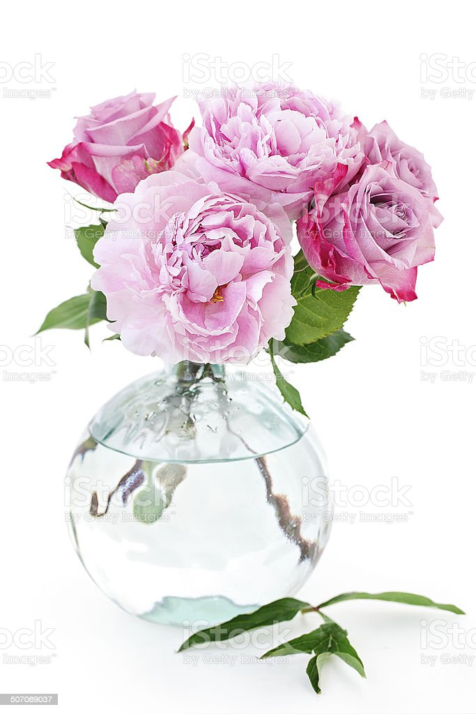 Pink flowers. stock photo
