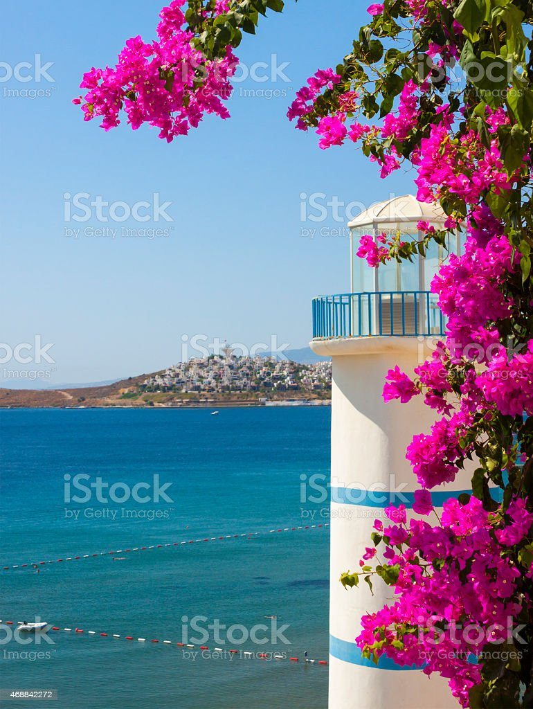 Pink flowers surrounding a seaside lighthouse in Turkey stock photo