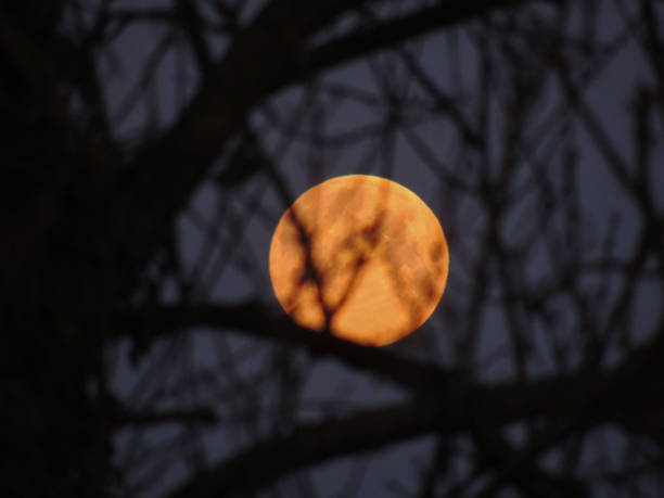 Pink Full Moon in Low Light stock photo