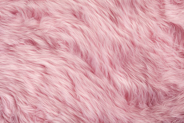 Pink fur background Photography of a pink fur. animal hair stock pictures, royalty-free photos & images