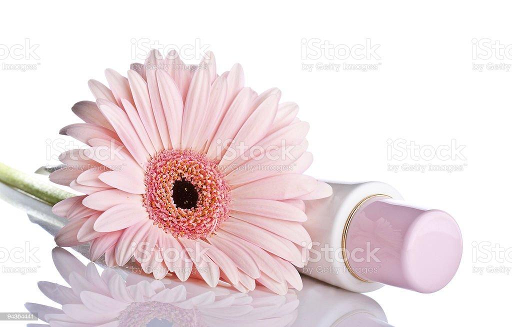 Rosa gerbera mit kosmetischen U-Bahn - Lizenzfrei Baumblüte Stock-Foto
