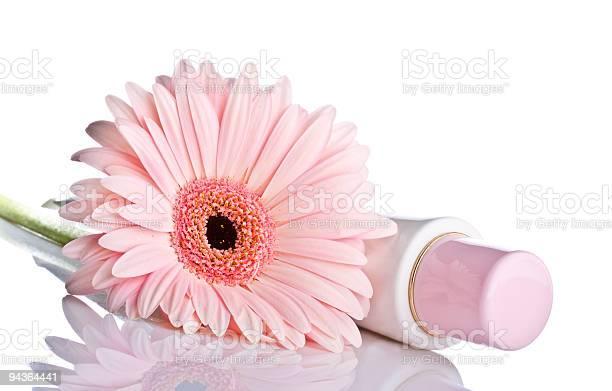 Rosa Gerbera Mit Kosmetischen Ubahn Stockfoto und mehr Bilder von Baumblüte