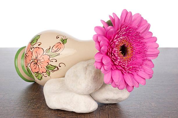 Best Gerbera Daisy Single Flower Jar Pink Stock Photos ...