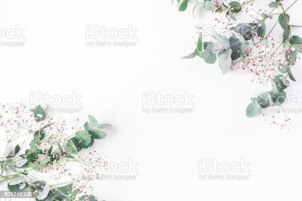 Pink gypsophila flowers and eucalyptus branches flat lay top view picture id821746308?b=1&k=6&m=821746308&s=612x612&h=uovnt1 edaz2lrsnua3av hm1zf753bbikyo9doegjo=