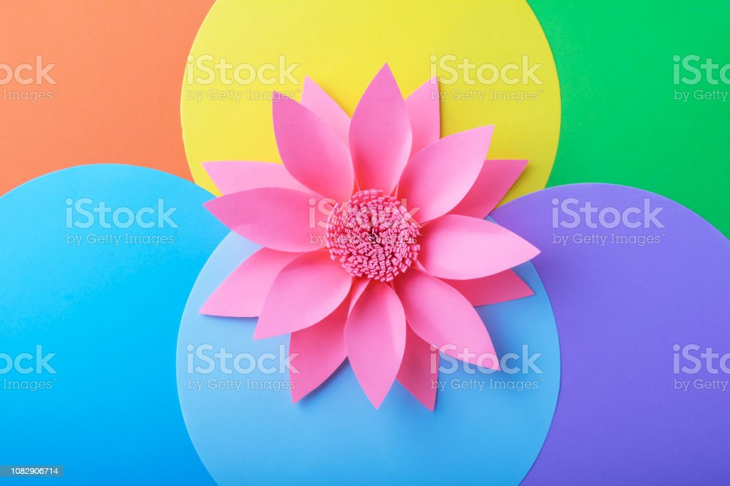 Pink handmade paper flower in multi colored background stock photo