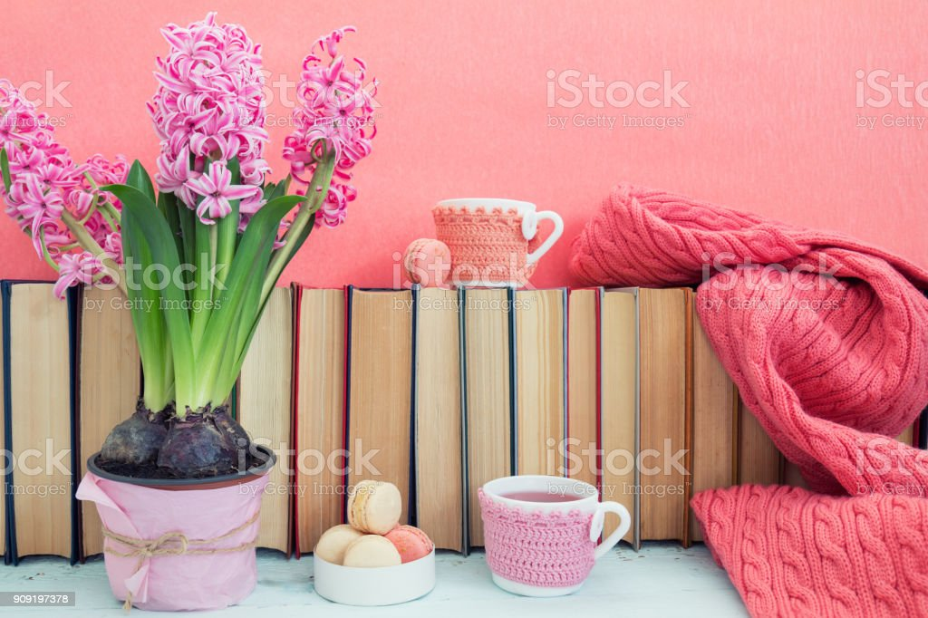 Pink hyacinths, macaroons, tea cups and scarf near pile of books at pink background. Beautiful spring pink background. Copy space. royalty-free stock photo