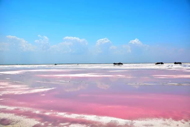 pink lake coloradas - laguna - fotografias e filmes do acervo